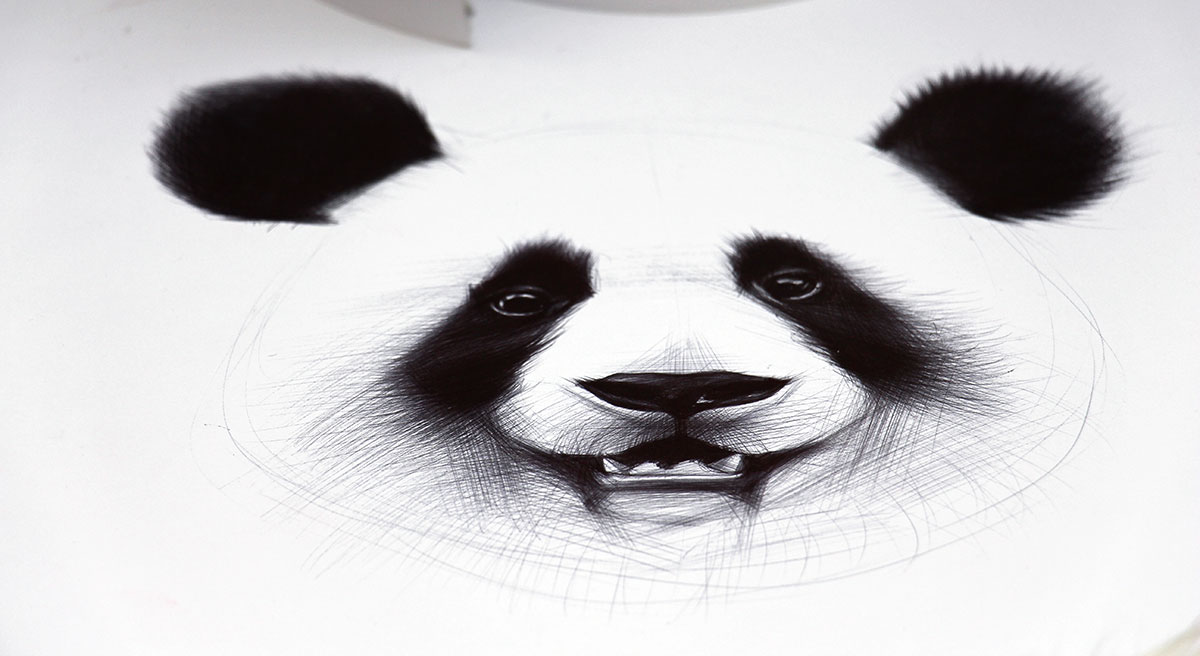 Ballpoint Pen Panda Drawings