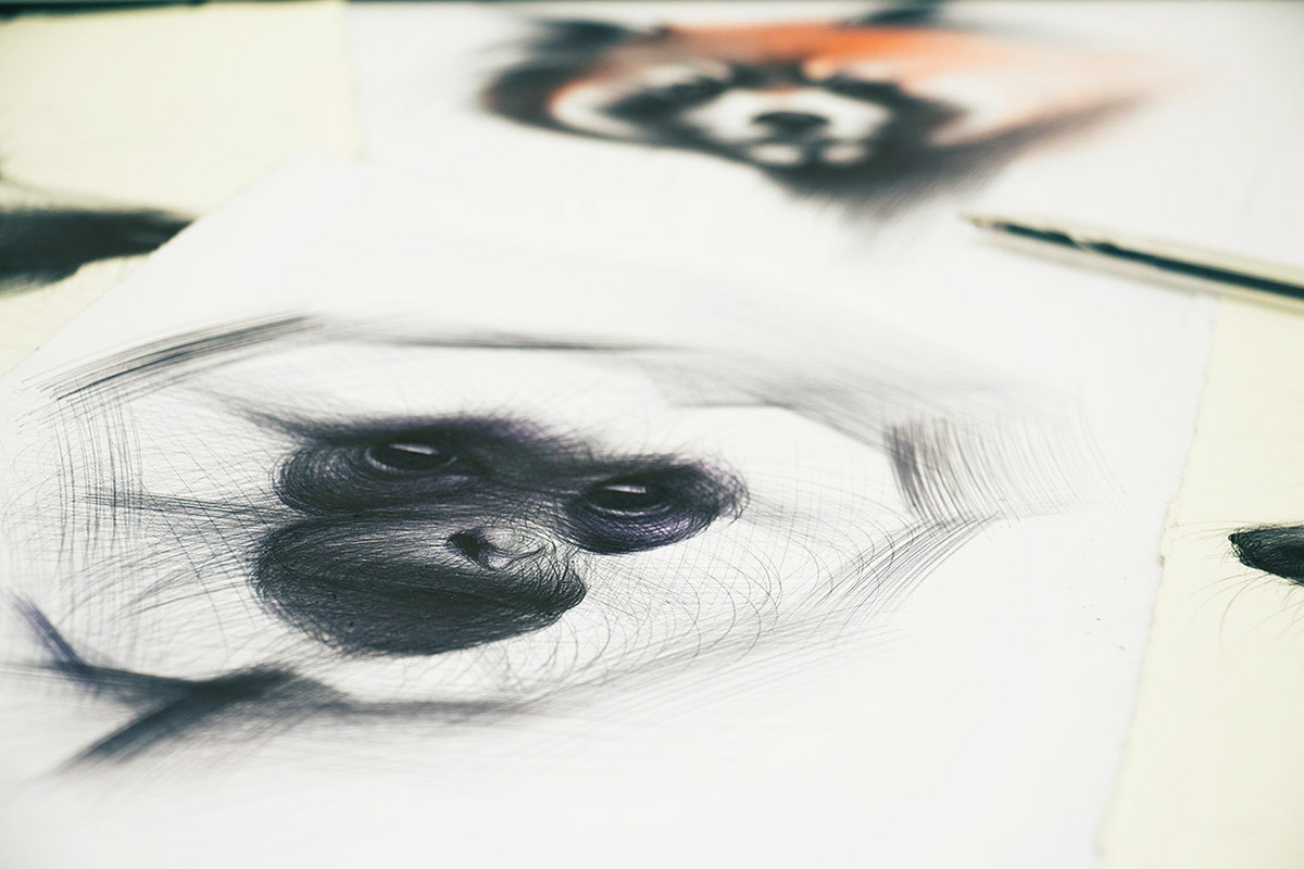 Ballpoint Pen Monkey Drawing