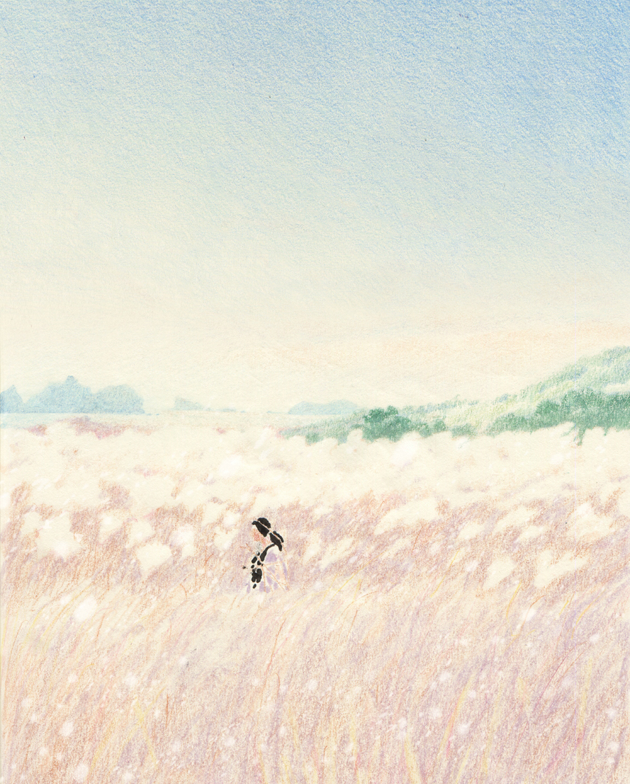 colored pencil gradient, drawing in a field, dreamlike drawing, soft sketch