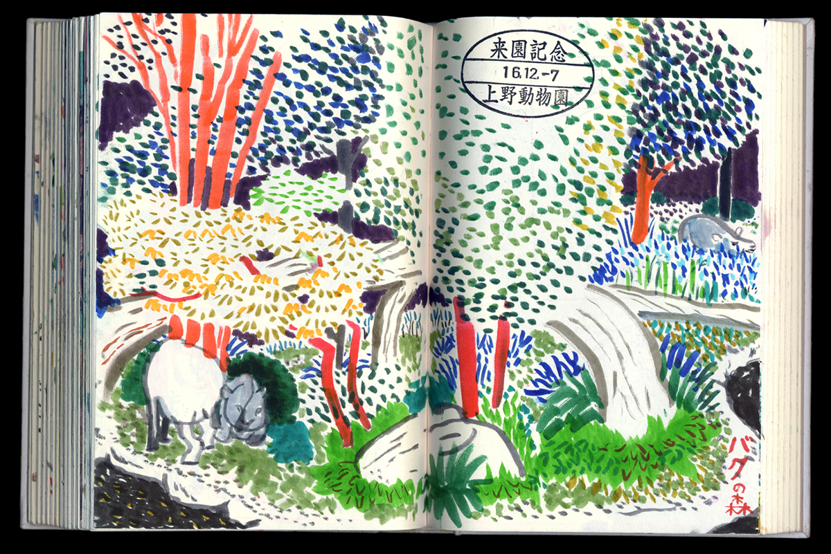 drawing in public, zoo drawing
