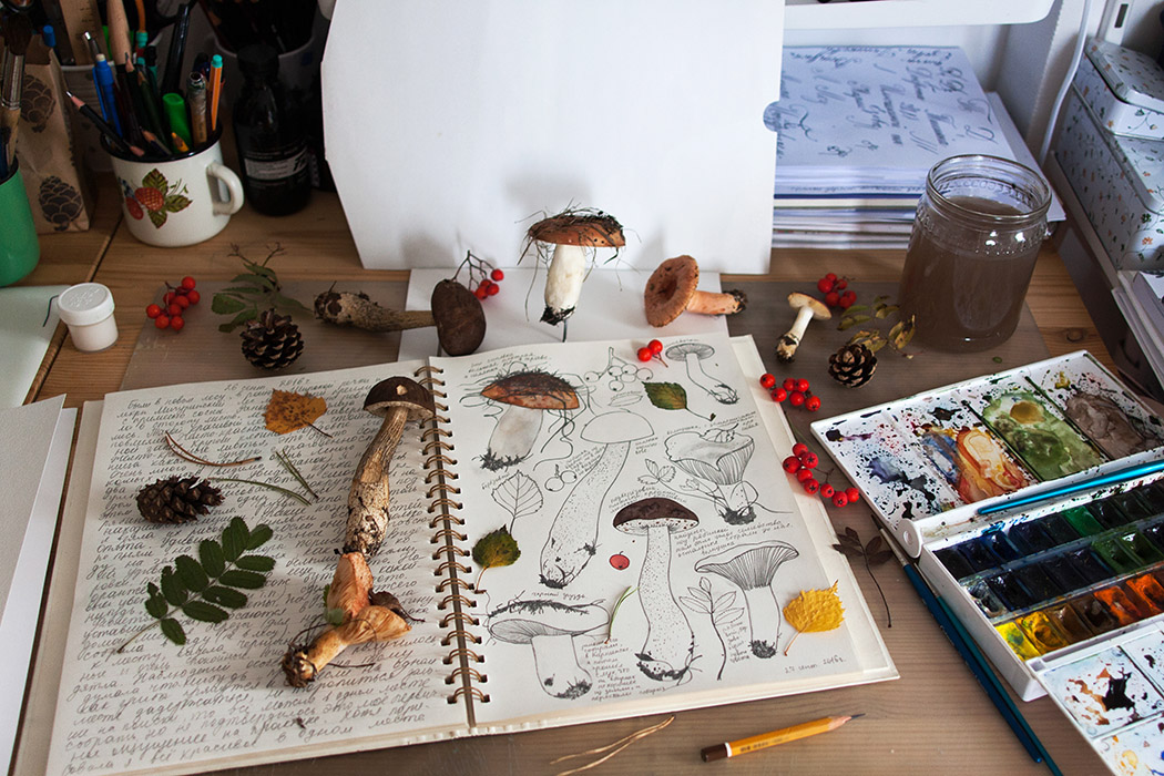 studio space, creative space, workshop, tools, medium, watercolor, mushrooms, pinecones