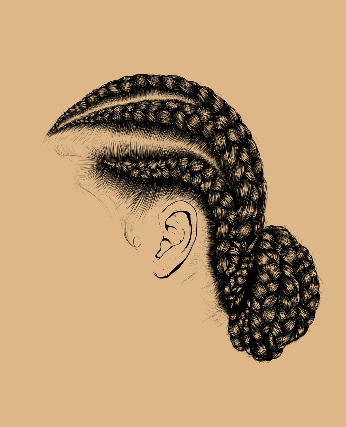 braids, hair, illustration, digital art, illustrator