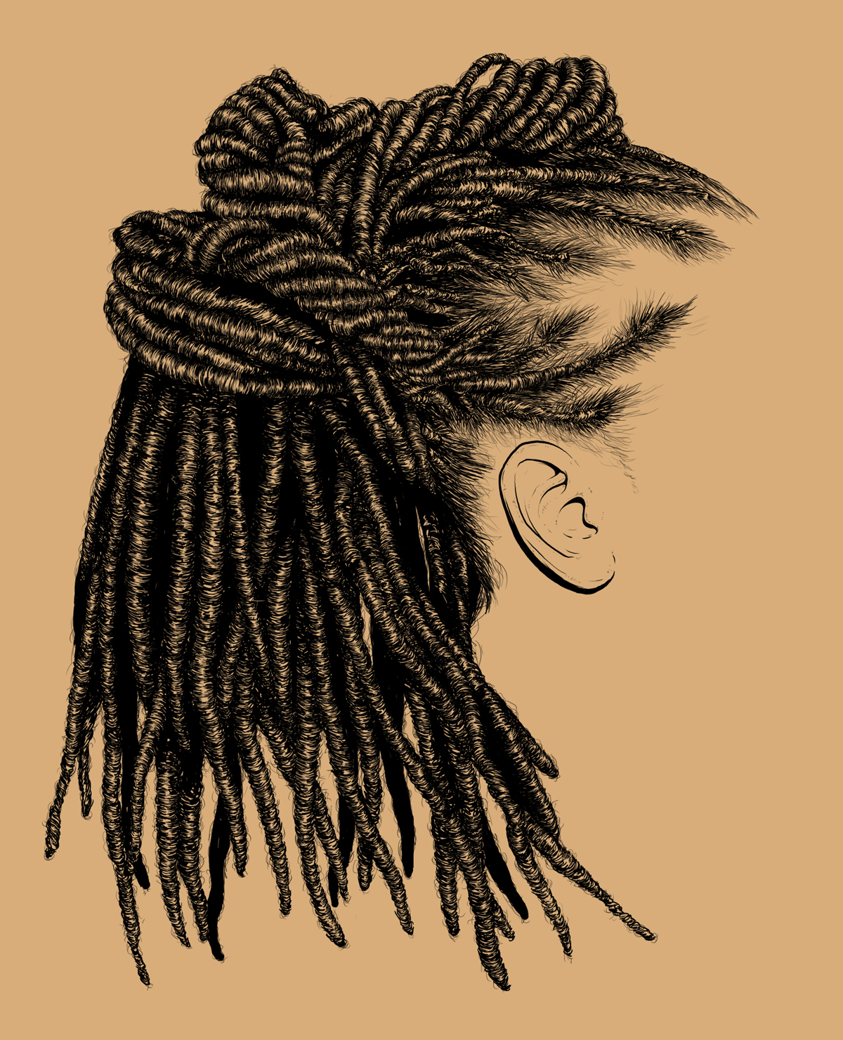 realistic hair, drawing, sketch, adobe