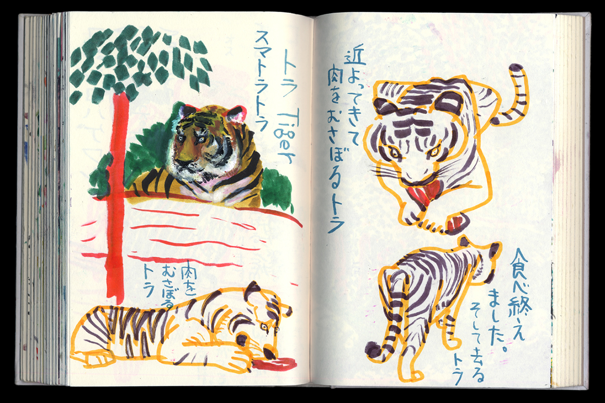 live sketching a tiger