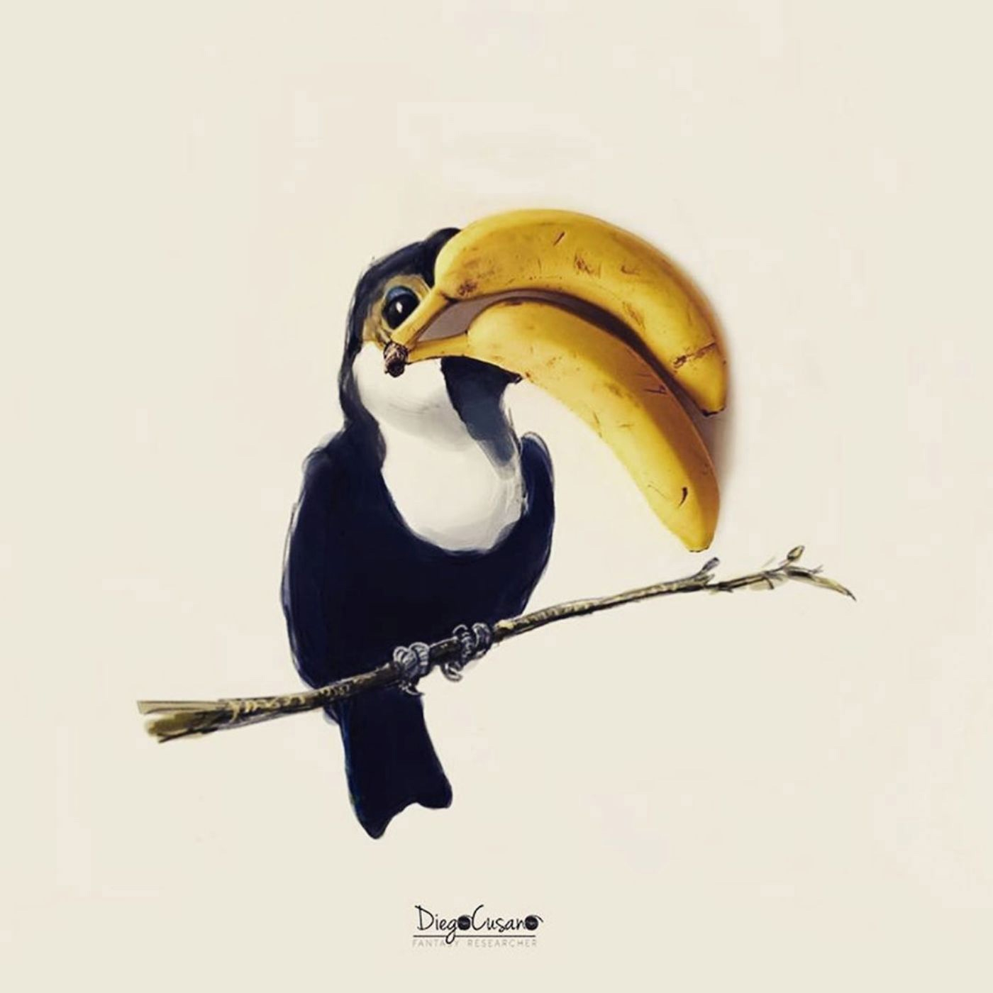 Illustrations of Banana Keel Billed Toucan