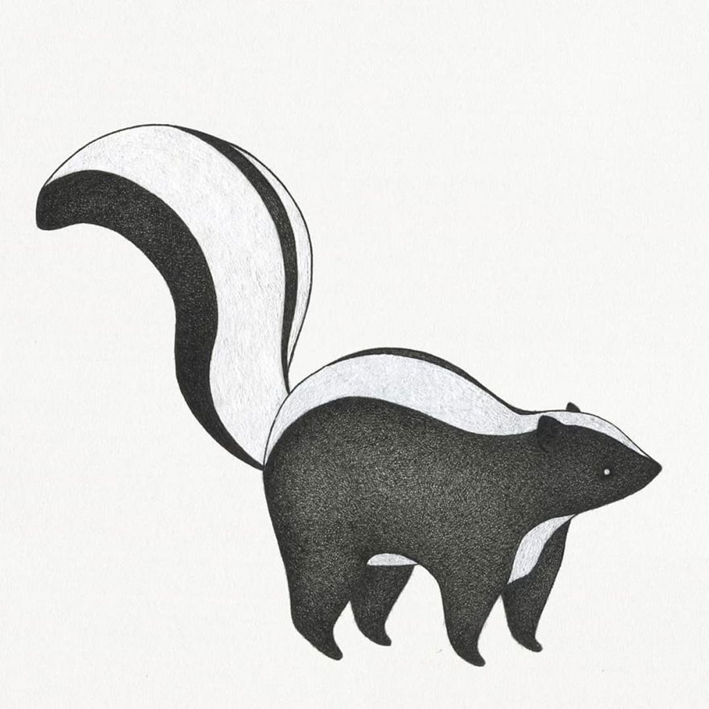 Drawing of a Skunk named Poof Poof