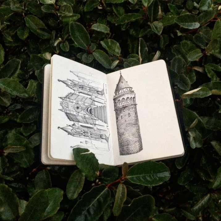 green, photography, bushes, sketchbook, showcase