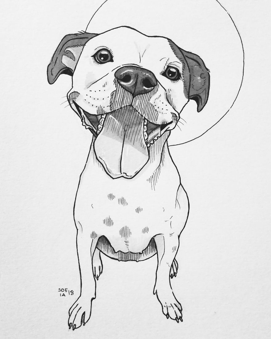 Drawing of a Terrier Mix Dog