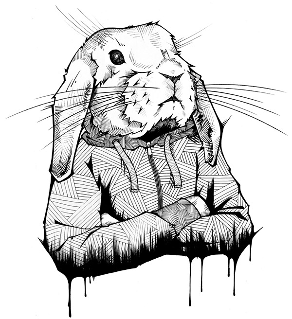 Drawing of a Rabbit with a Hoodie
