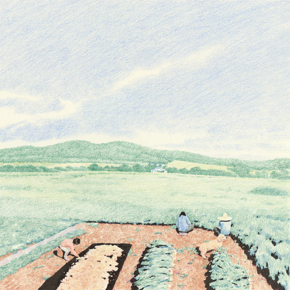 colored pencil landscape, field drawing, labor drawing, dog