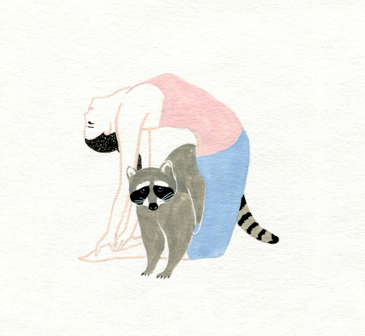 hand drawn yoga pose with racoon