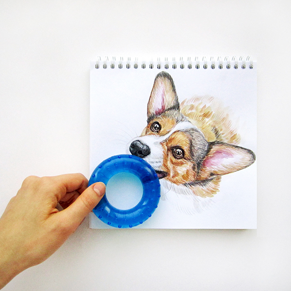 interactive dog doodle