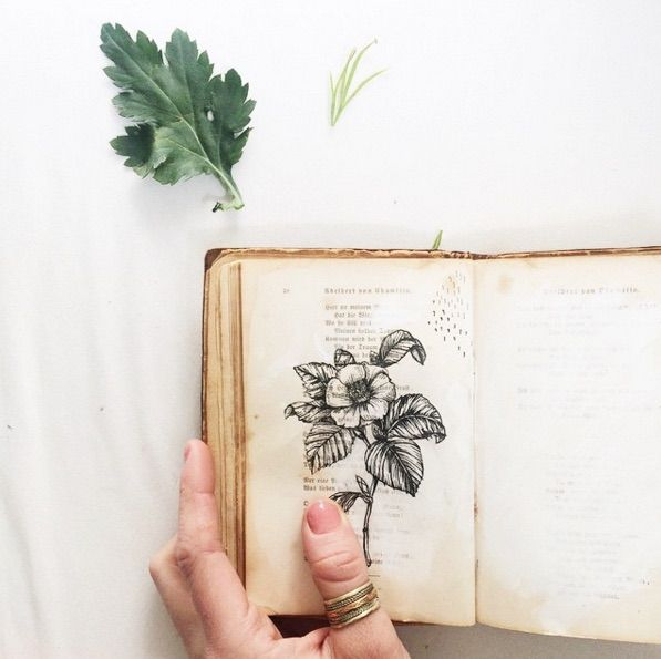 Ink Flowers Blossom Inside Old Books | Doodlers Anonymous