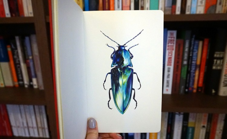 Beaming Ballpoint Beetles | Doodlers Anonymous