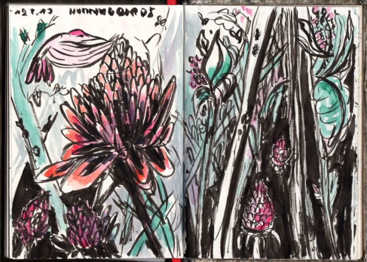 Lush Layers of Plants Live in this Sketchbook | Doodlers Anonymous